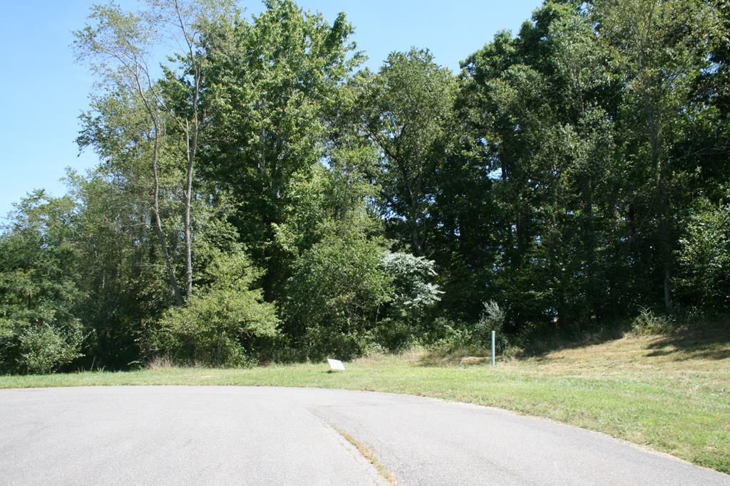 Nice secluded subdivision located in town limits with public water, sewer, and underground electric. Many great house plans available from brokerage to compliment these clear lots. Very favorable USDA Land/Home financing available for qualified buyers.