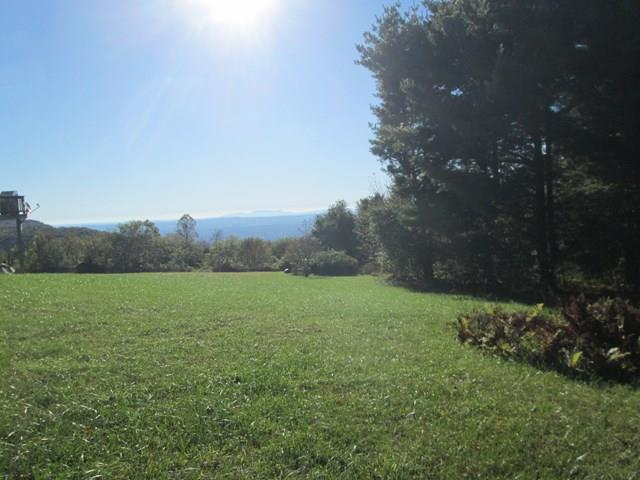 2 Piedmont View lots for the price of one. Lots are level with great views. Just off the Blue Ridge Parkway. Priced to sell