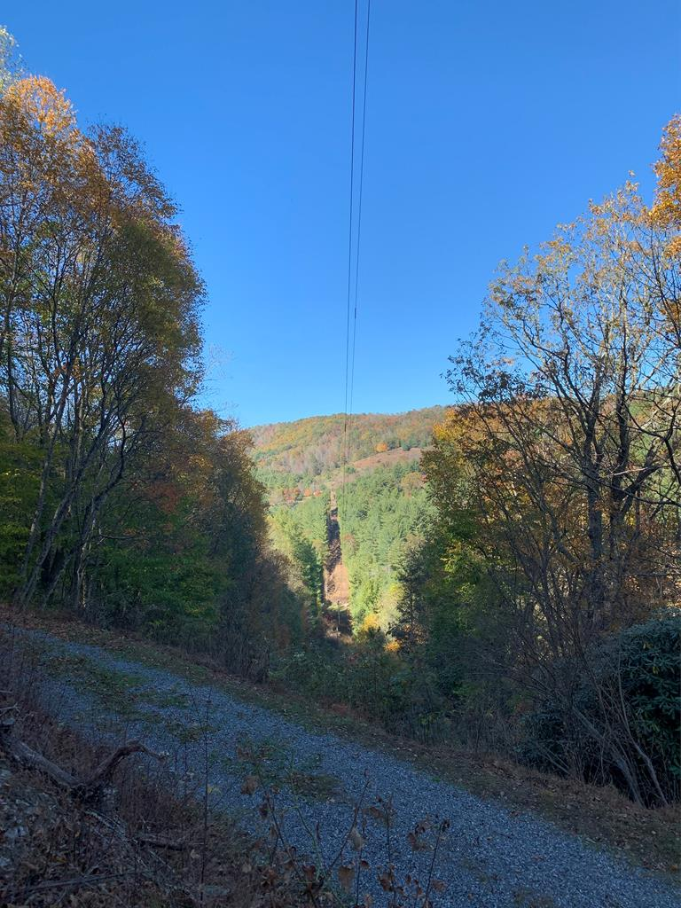 A rural, secluded, and private wooded tract that would be a great property for an outdoorsman or hunter with abundant wildlife and mature hardwoods. There are beautiful views from the property and a possibility for a nice homesite. There is a good road providing access alongside the property with an old road bed that could provide access onto the property. The property is in very close proximity to a stocked trout stream, the New River, and Grayson Highlands State Park.