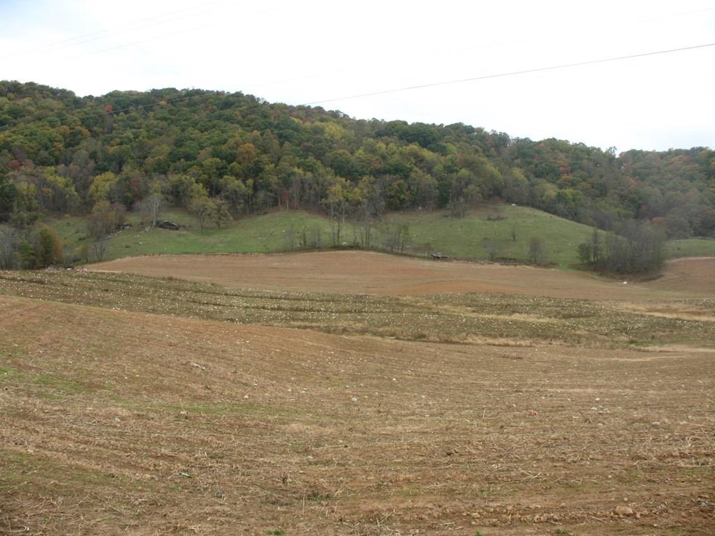Located in beautiful Grayson County is this 165.4 acres working farm. Pumpkins and corn corps are being planted. Property is fenced for cattle. Property has two springs and a small creek for the animals. Two barns on the property and other outbuildings. Land is gently sloping. The old home place was built in 1900 and will need updating. Property plenty of wildlife, deer, bear and turkey. Would make a great farm.