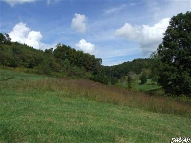 Are you looking for some land to build your dream home, have your animals and still have some wooded property to hunt and hike on?? Well here it is! This land is located less than 5 minutes from town, hospital, and close to the creeper trail! The land would provide a perfect spot for a home with a basement and there is plenty of room for a garden, horses and have wonderful mountain views! Come see this land today, they just are not making any more of it!!