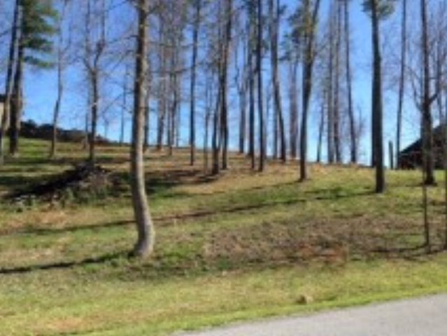 ONE OF THE FEW REMAINING LOTS IN HERON POINTE ON SOUTH  HOLSTON LAKE WHERE A BEAUTIFUL HOME CAN BE BUILT! A SECOND-STORY BEDROOM COULD HAVE A FABULOUS LAKE-VIEW BALCONY. THIS LOT IS WELL-PRICED & OFFERS NICE VIEWS & GOOD TREES.  ENJOY THE LAKE LIFE OF HPs PRIVATE (GATED) BOAT RAMP & STORAGE, BOAT SLIPS & DOCKS, EXCLUSIVE TO HP RESIDENTS ONLY.  THIS HIGH-END LAKEFRONT COMMUNITY IS ONE OF A KIND IN WASHINGTON COUNTY, & FEW GOOD LOTS LIKE THIS ONE ARE LEFT!  OWNER READY TO SELL.  MAKE AN APPOINTMENT TO SEE THIS LOT TODAY!