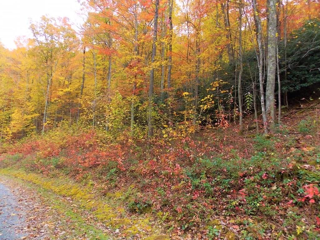 Come to the perfect getaway. This is a beautiful piece of land in the exclusive Cove Creek Subdivision. With large tracts, you may have neighbors but you won't really see them. This land has lots of beautiful building spots. Peace and tranquility and gorgeous views make this land stand out! An additional 23.775 acres available that fronts Hawks Peak Road.