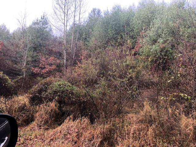 Property fronts on Gold Hill Rd and Poplar Ln. Wooded 10 acres that would be a great place to build your dream home. Close to the New River, boat landings.