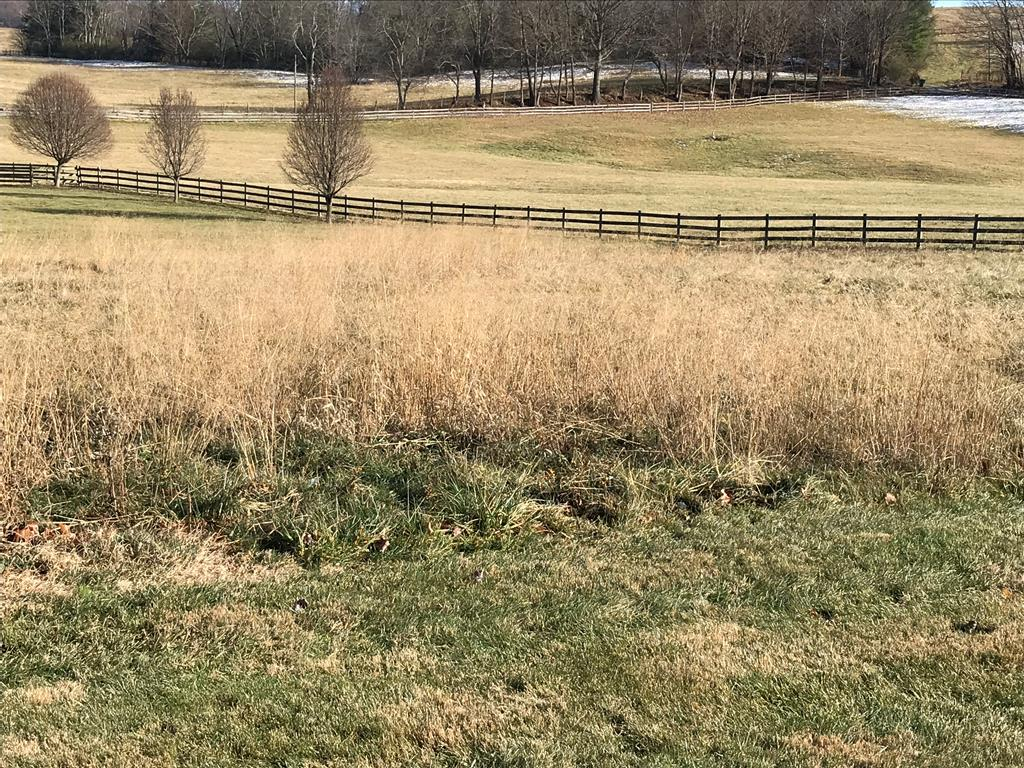 This level lot in a beautiful neighborhood is waiting for your dream home. You will be conveniently located to Abingdon's many attractions but have only county taxes. With the beautiful farm behind, it's like living in the country with all the city perks.