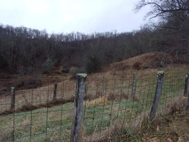 45 acres minutes from Independence with road frontage and good building sites.  Small stream.  Planted in white pines with a lease for tipping.  Call today for more information.