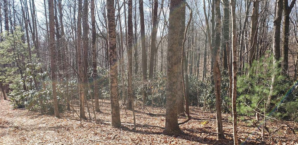 2 Lots in High Chaparral Subdivision. Near the pond. Acreage is estimated.