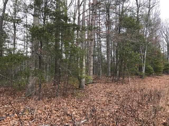 Here is your chance to own 10.49 acres of wooded land with a great view.  Located near Jefferson National Forest.