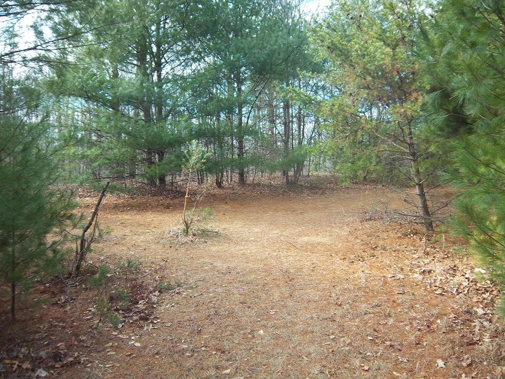 Looking for land on the Blue Ridge Parkway with a stream, views, divided into 4 tracts ranging  from 1.31 acre to 2.65 acres. The property is at the end of a private lane with a 15 foot right of way joining the Parkway on the south and west sides.