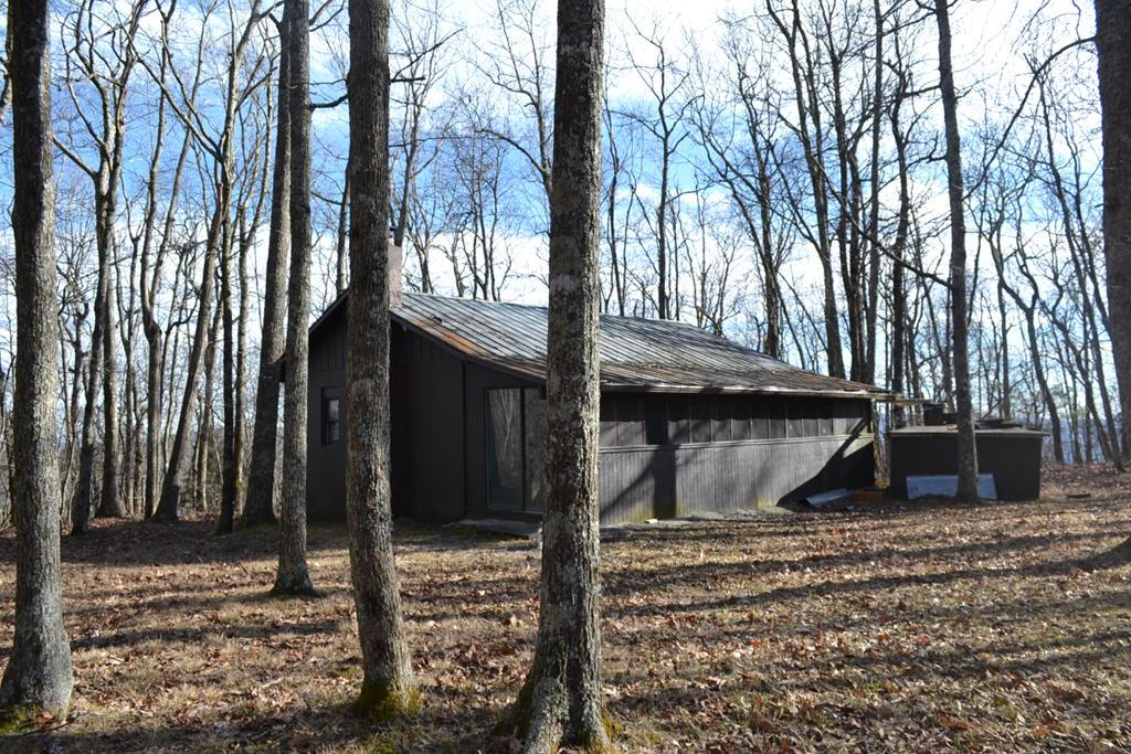If you are looking for a private mountain retreat or a hunter's retreat off the grid, then take a look at this gorgeous 12 acre tract bordered by Jefferson National Forest on three sides and state maintained road frontage on the fourth side.  Spectacular seasonal views, High elevation (4200 ft.),abundant wildlife, modest cabin, and thousands of acres to hike or hunt.  The land lays well and offers a small hunting cabin with open great room that includes the living, kitchen and dining area with wood stove and propane heater.  Two small bedrooms with handmade bunk beds, 1full bath, cistern water system, septic in place. No electricity. Generator conveys. Nothing but the sounds of Nature here at this private retreat. With several potential building sites available you can stay in the cabin while constructing your dream mountain home, or simply improve the existing cabin.