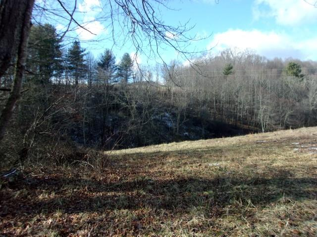 14 acres in the Grassy Creek area and close to the NC line.  Small stream.  60% open.  Views.  No restrictions.  Secluded.  Call today!
