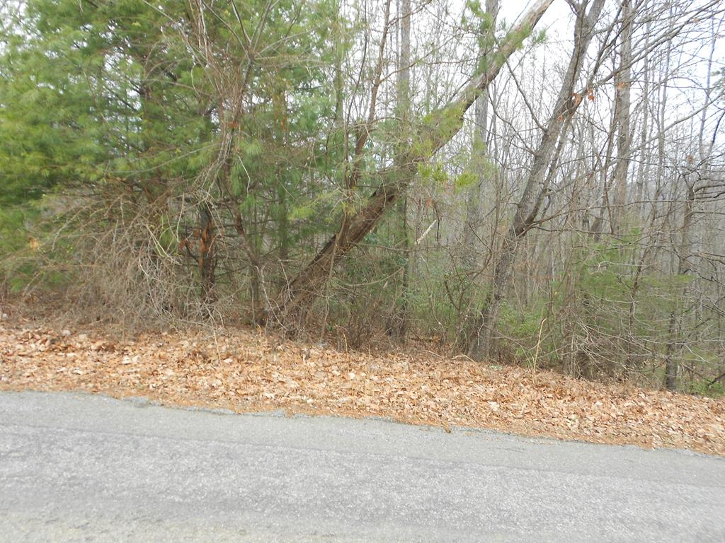 Owner may be willing to finance. Buildable wooded 1+/- Acres Land Lot on paved county road. No Restrictions. Manufactured homes OK. Mostly wooded, you can clear only the trees you want to clear and tuck your home/cabin under the canopy of the trees to be private and secluded. Suitable for all home styles including stick built, modular and doublewide. Lots of mature hard wood and pines. Only minutes from the Blue Ridge Parkway with private road for easy access off state maintained road. GREAT PRICE for buildable land.