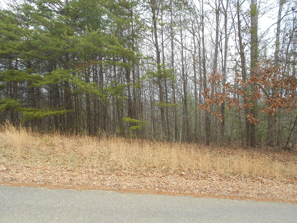 Owner may be willing to finance. Secluded buildable wooded 1+/- Acres with private driveway to prime building spot in center of property. Already perked for a 3 bedroom home! Deeded right of way from private road to paved county road. No restrictions. Mostly wooded, you can clear only the trees you want to clear and tuck your home/cabin under the canopy of the trees and be private and secluded. Wonderful views possibly with just a little clearing of the mature trees that surround the prime building spot. Suitable for all home styles including stick built, modular and doublewide. Lots of mature hard wood and pines. Only minutes from the Blue Ridge Parkway with private road for easy access off state maintained road. GREAT PRICE for buildable land. Deeded right of way access of a private road leading into the property.