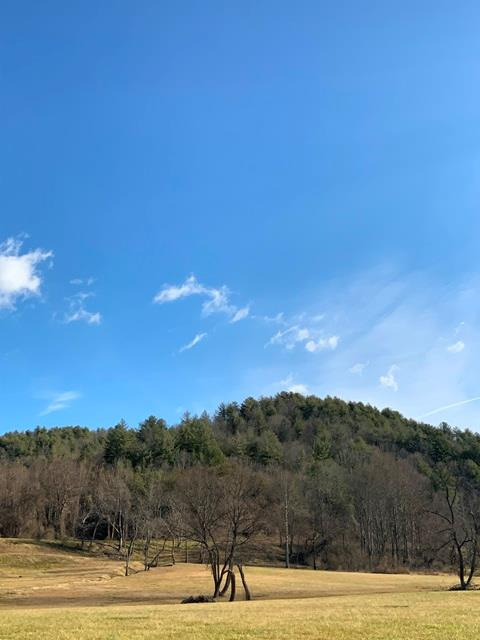 Beautiful 61 acres overlooking the New River only minutes from Galax. Great Building locations throughout the property.