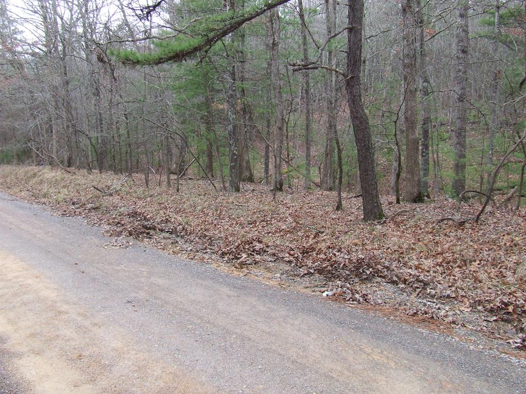 Nice wooded lot which is suitable for hunting on or building on.