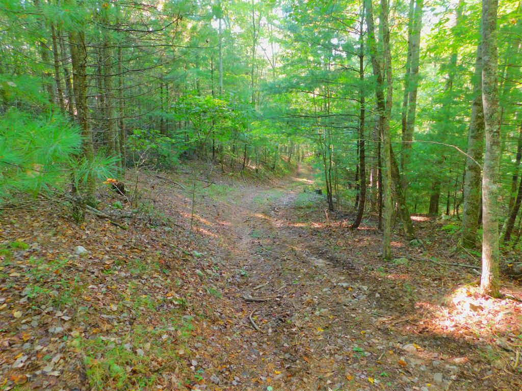Looking for mountain land you can build on in Floyd County? This 53+/- acre parcel has several good building sights with 3 springs on the property. Also plenty of road frontage. Land has a great mix of hardwoods and roads to access property. Build your dream home or use it as hunting land as the wildlife is plentiful in this area. Great opportunity to own usable mountain land.