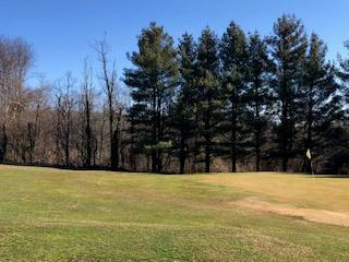 Wooded 1.24 acre tract just off the Parkway in Skyland Lakes Golf Resort. Perfect spot for your dream house overlooking the golf course!