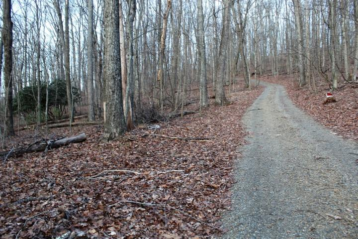 29.48 Acres of land located in Floyd County, Virginia (0 Parkway Church Road, Meadows of Dan, VA).All Wooded. Good timber (Mainly all hardwood). Fronts on private graveled road (Parkway ChurchRoad). Several Good building sites. Abundant wildlife - Hunting (Turkey and Deer). Private Road graveled going into property on SW Boundary. Runs entire South Boundary of property. (Approximately 2000ft). With clearing of some trees, you could have long rangeviews of Buffalo Mountain.0.7 tenths of a mile to Blue Ridge Parkway. 5 minutes to Meadows of Dan, VA. 15 minutes to North Entrance to Primland Resort. 20 minutes to Floyd, VA. 30 minutes to Hillsville, VA and Interstate I-77.