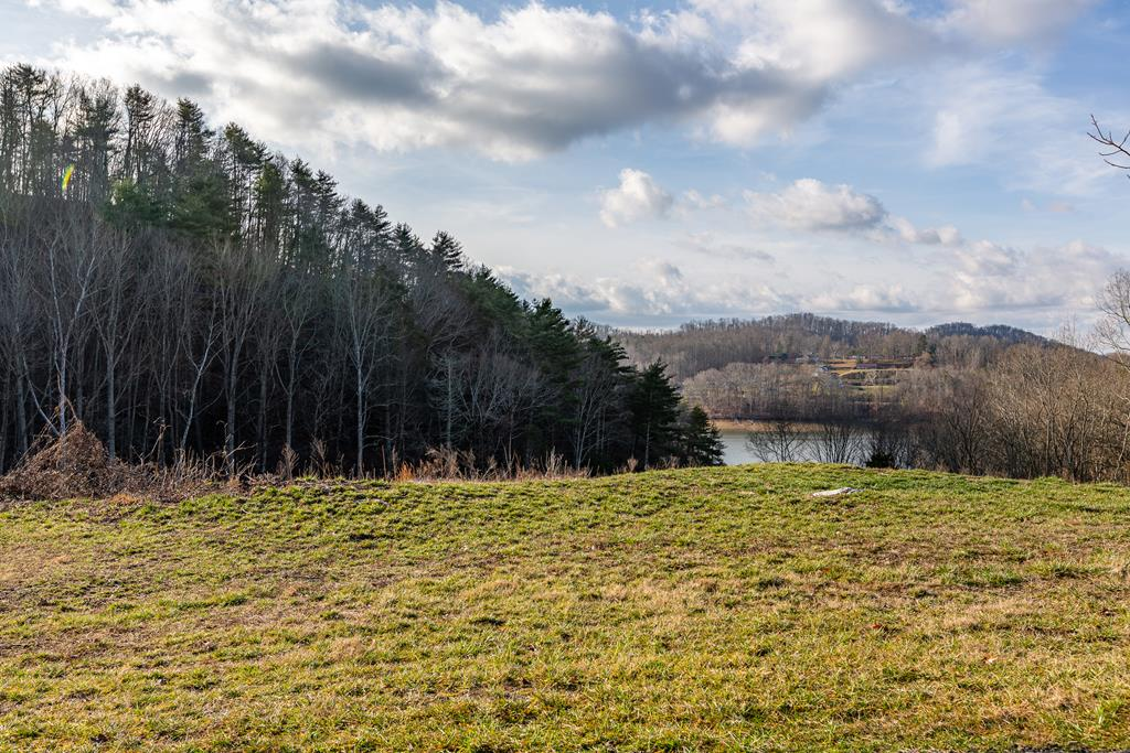 WATERFRONT -- LOT TO BUILD ON IN WYLDWOOD SUBDIVISION!  BEAUTIFUL VIEW OF WATER - MOSTLY CLEARED!  GREAT BASEMENT LOT!  MINIMUM SQ.FT. HOME 1200 SQ.FT.  THE DOCK HAS ALREADY BEEN BUILT AND READY FOR YOUR BOAT - UP TO A 26 BOAT!!!  PUBLIC WATER & PRIVATE SEPTIC (NEEDS TO BE PERKED).