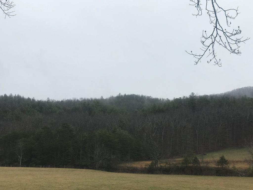 112.814 wooded acres, less than 10 minutes from town of Dublin with a creek bordering one side of the property. This wooded tract includes a portion of Walker Mountain has mostly mature lumber and has an opportunity to be income producing or build you a home and have privacy and acreage for hunting and ATV/Horse Riding. Lots of mountain views. The location also is right off of the 4 lane (Route 100) and is currently undeveloped. This property has potential to be used for Commercial or Residential. Just before reaching the property you can see the gentle roll of the farmland and the potential that this property holds if it were timbered and/or developed. Over 1000 ft of  Little Walker Creek bordering the property. . Elevation varies from 1825ft on the Little Creek Side to 2,720ft at its highest peak on the top side (per Pulaski County). More pictures to come when weather clears up, current photos taken from Little Creek Rd.(does not include pasture areas)