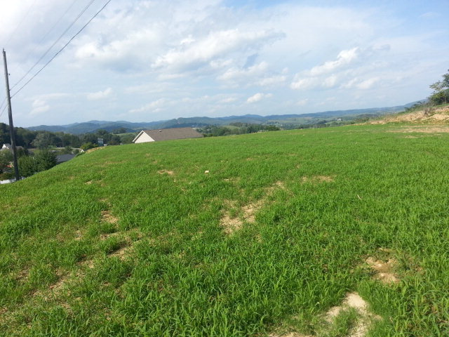 BUY YOUR OWN LOT AND START CONSTRUCTION RIGHT AWAY!! Graded lot with picturesque views overlooking Tazewell, Virginia. Close proximity to schools, the hospital, shopping, restaurants, and other amenities makes this property and ideal location for your dream home. Call today for your showing.