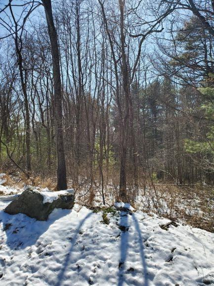 This is a desirable building lot in the Cascade Mountain Resort.  The lot was cleared of large trees several years ago and now has small trees on it.  Septic tank has been installed and community water is ready to be installed.   The lot slopes away from the street.