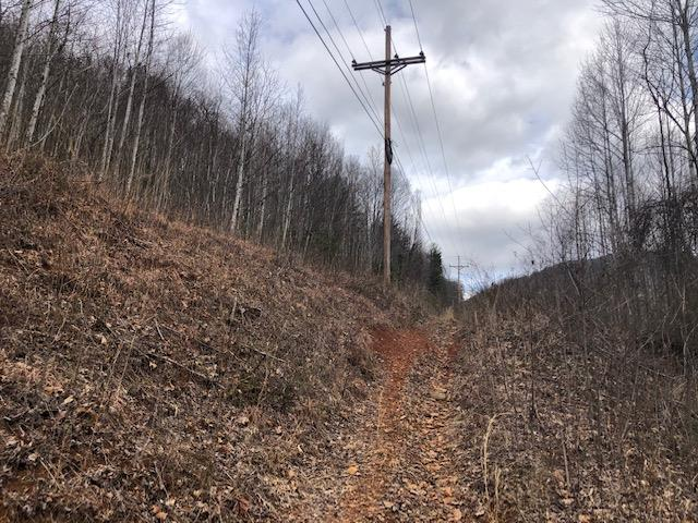 AEP lines on edge of acreage.  Elevations up to 2.500 ft.  Rolling young timber, wildlife.  Build, hunt, hike or camp.  Paul's Creek roars through this valley.  Waiting on additional property information at current time - taxes estimated.