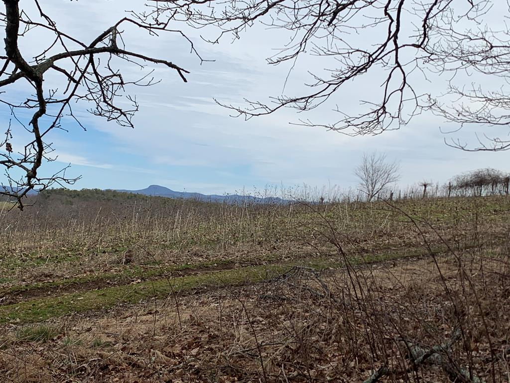 This property is gently sloping and levels up towards the rear of the property where you will find spectacular long-range views of Buffalo Mountain.