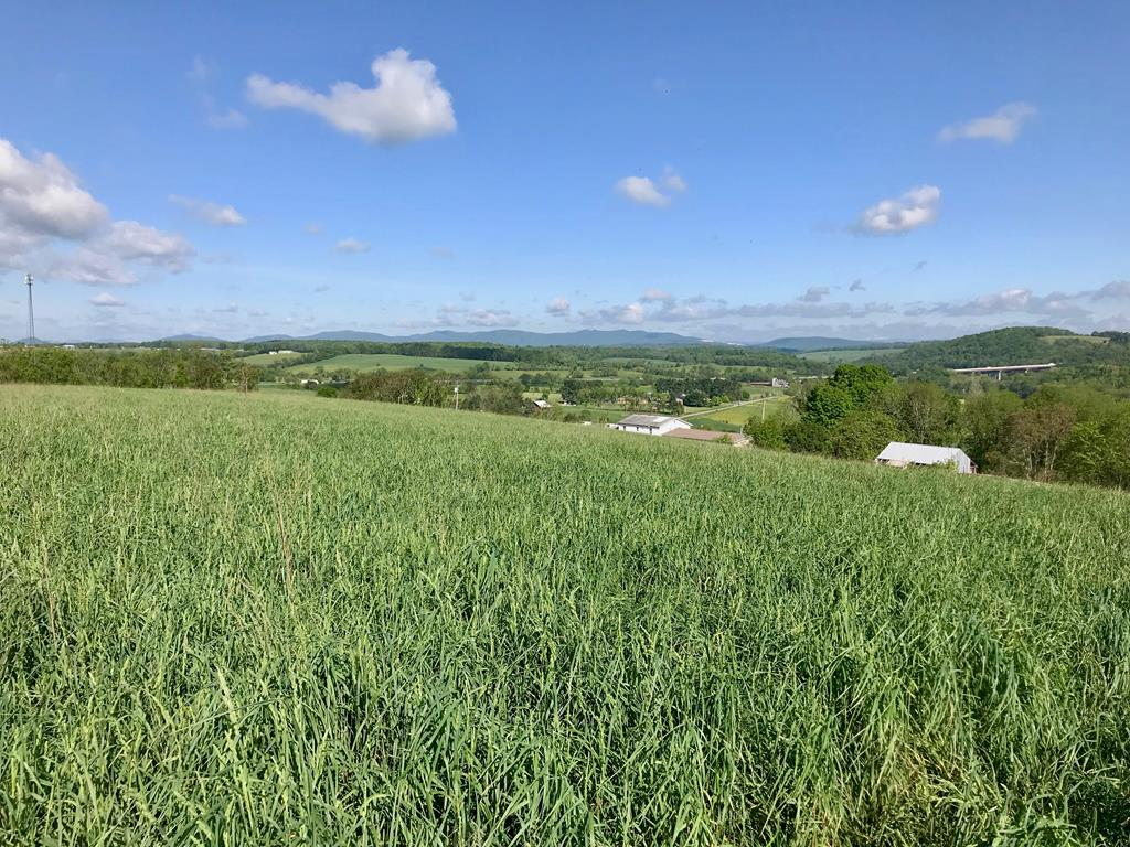 Establish your new farm on the top of this hill that provides views for miles. This blank-slate acreage is everything you have been looking for: lush, open pasture, long-range mountain views, close proximity to the interstate, the New River, the New River Trail, and all the other amenities that living in Wythe County provides. Locate your house at the peak and enjoy commanding, 360-degree views of your new property. There's plenty of room for your horses and other livestock. When the day is done, head down to the New River and the Trail for some hiking and fishing or simply sit back on your front porch and rock in your chair to the sounds of the country. The long road frontage also provides an opportunity to sub-divide the acreage (26.11 acres) as desired to expand the housing or farming options available to the new owner. Take a look at the photos and schedule your appointment today.