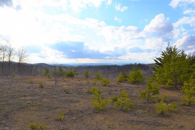 These 23.326 acres contain a mixture of open and wooded land. Would be an excellent site for a home with gorgeous long range views. Located right outside the town of Christiansburg VA! Radford and Blacksburg VA are within a 15-20 minute commute as well.