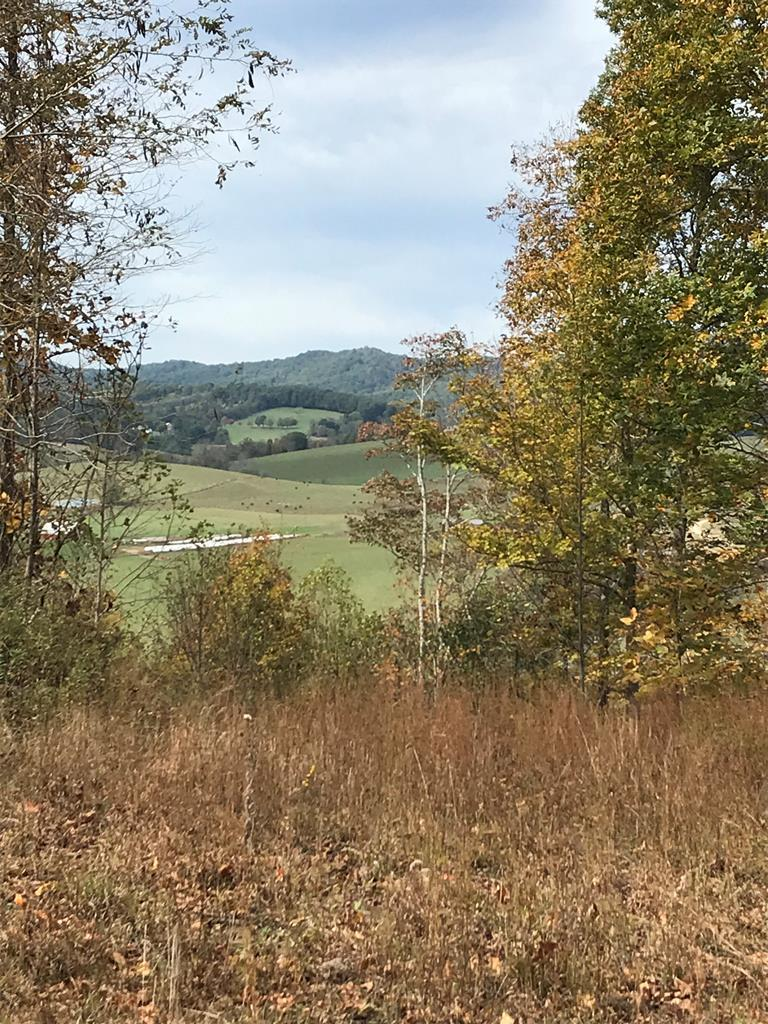 Great recreational hunting land! Undeveloped 159.6 +/- Acres of mixed hardwood and pine adjacent to I-77S and fronted by Cove Creek. 4 wheel drive required.