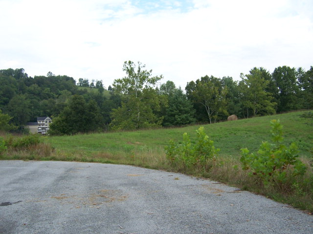 Waterfront building lots on over 135 acre professionally designed subdivision. Located on the beautiful shores of South Holston Lake, just 15-20 minutes from downtown Abingdon. All lots are wooded, most have cleared meadows and most are lake frontage! A professionally prepared survey plat has been recorded with lots approved for on-site sewage disposal and buried utilities. Subject to final permitting. Each lot would have its own well. These lots are subject to a declaration of covenants, conditions, restrictions and easements that have been recorded. However, there will be an Owners Association established for architectural control and potential assessments for street and other maintenance. The association has not been established as of March 2020. Buyers agent to verify all information.
