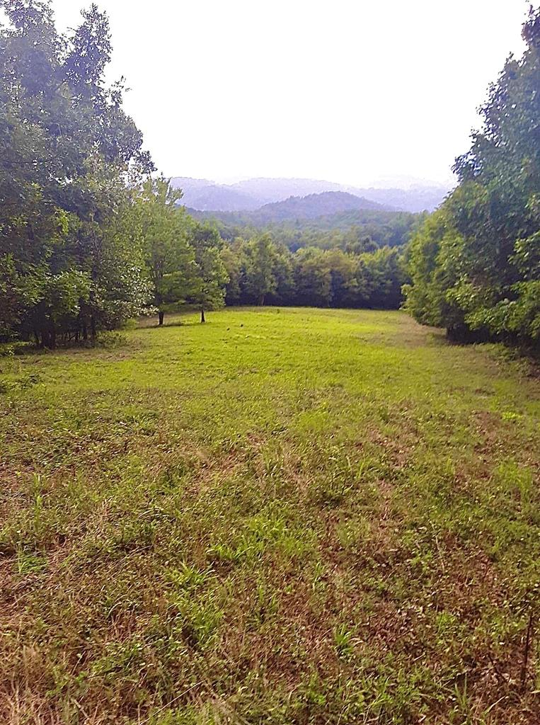 5.11 acres joining National Forest that tops the back side of Cove Mountain (Crocketts Cove Rd). If you are looking for a good hunting spot, this is it! There are currently 2 hunting blinds that convey with the property. Gated entrance to the property through the woods. Most of the property is wooded, but there is a nice sized (approximately 2 acres) open field that would be a great place for a cabin or permanent residence. Seller indicates that the small stream on the property has never went dry to his knowledge. Seller also indicated that there has been a 10 point buck and other types of wildlife hunted off of this property. Portions of Indian Meadow Rd have no electricity available, but it would be a great place for an off-the-grid home or camper. (There are other off-the-grid homes down Indian Meadow Rd). Property is accessed through deeded 50' right of way and does have a deeded road maintenance agreement (see attachments). Perfect property for the hunter, camper, or just privacy!