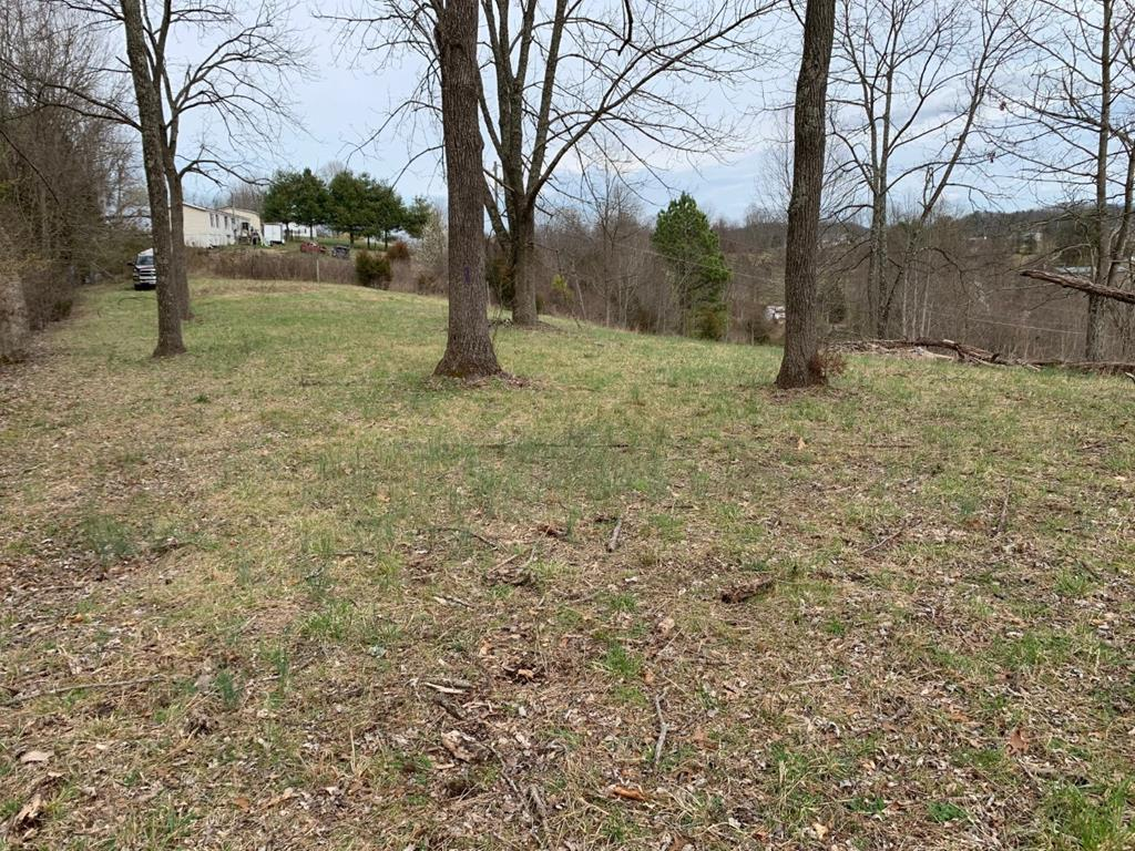 This 3 acres +/- parcel of land is now available in Washington County, Virginia near South Holston Lake!  Fully fenced with gate - can be used for your manufactured home or site-built home site.  Seller says two existing septic systems are on the property and public water tap is installed.  Multiple home site options available on this property.  Enjoy access at the lower portion of the property near the gate - or drive up the vehicle path up to the upper portion of the property for a great level home site with mountain views and great privacy!  Enjoy peace, quiet living in the country with acreage, near the lake and within easy driving distance to Abingdon and the Interstate.