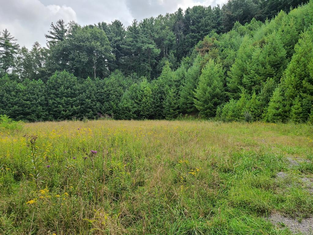 Looking for the perfect build-site for your future home? This property is for you! 3.6 acres located in the Sunset Hills subdivision already has city water and sewer available for you. This property gives you plenty of room to build your dream home. This property is just a short drive to Tazewell's Main Street and is close to shopping, dining, and other amenities. Call today to schedule your showing.
