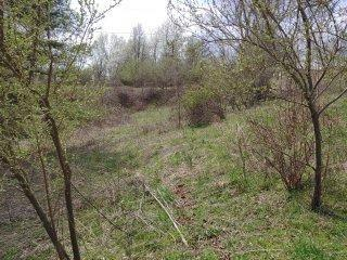 """Buildable partially wooded and some open 11.95 acres with no restrictions. There is no survey, being sold metes and bounds. Approximately one acre cleared with an old well and 3 septic tanks, that previously was used as a trailer park. The rest of the land is wooded with an abundance of wildlife and room for expansion. Seller is selling land """"as is"""" with any inspections for well and septic's to be for informational purposes only. There is a very old single wide trailer on property currently being used for storage that will convey with property but NO VALUE is being given to trailer. With all this acreage and room for expansion, it may be able to be an income-producing property again with upgrading/updating or just bring your RV's and camp out. Only a few miles away is the public boat ramp, the quaint town of Fries which has the Virginia Birding and Wildlife trail trail, the New River Trail, community Theatre, pool, hiking, fishing and biking. Come to Fries and experience it's outdoors!"""