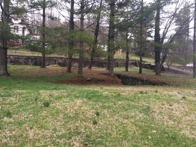 GREAT 1.12 ACRE WOODED BUILDING LOT!! LOCATED IN THE HEART OF THE BEAUTIFUL HISTORICAL TOWN OF TAZEWELL!!  PRIVATE SETTING WITH A SMALL STREAM, PAVED DRIVEWAY AND PUBLIC WATER AND SEWER!! NOW IS THE TIME TO BUILD THAT DREAM HOME YOU ALWAYS WANTED!! CALL TODAY!!