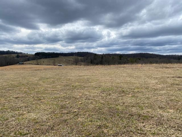 GET AWAY FROM THE CROWDS!  This 16 acres just off the Blue Ridge Parkway is located near the Olde Mill Golf Course.  Only a few minutes from Chateau Morissette Winery and many other outdoor amenities, this land lays exceptionally well and is perfect for that new house to get away from it all!
