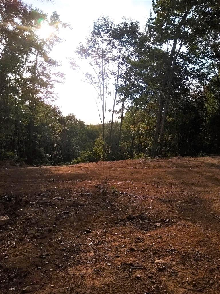 Over 156 acres of beautiful mountain land. Many opportunities with this land to build a home on or a great location for a weekend getaway cabin perfect for deer hunting. Good standing timber.