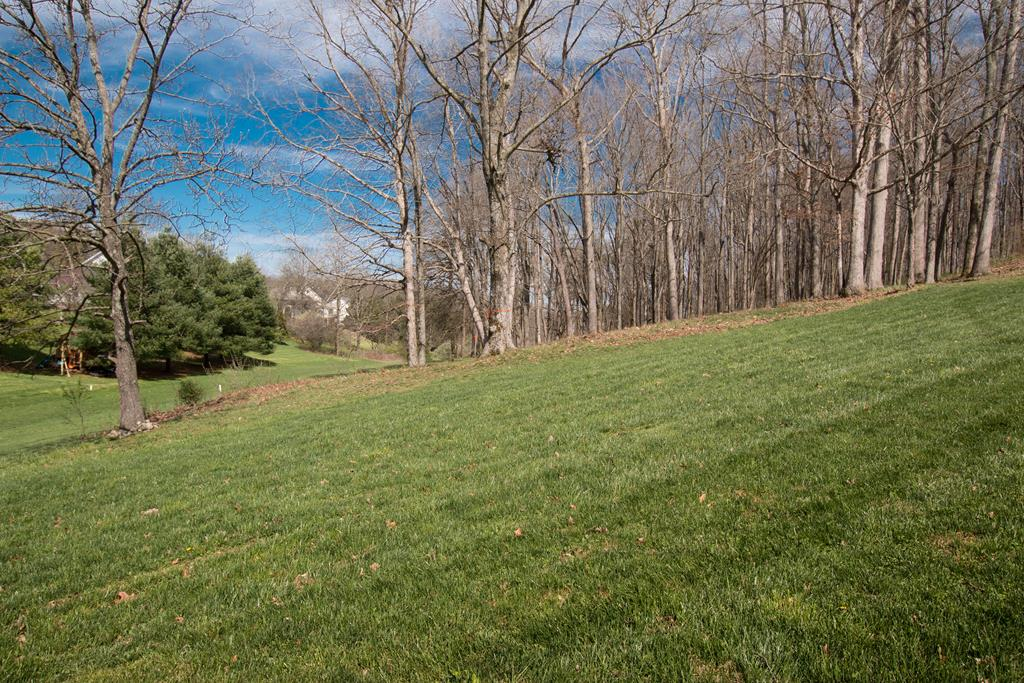 LIVE IN THE HERITAGE, one of Abingdon's newest neighborhoods! LOCATED minutes from I-81 (Exit 14) and the heart of historic Abingdon, this is the perfect location to build your DREAM HOME.  This lot features underground utilities (electric/water/sewer), natural gas, and high-speed internet. Situated on 0.68 of an acre, this gently sloping, partially cleared lot is ready for a new owner. Why pause? Schedule a preview of this lot, meet with a builder and/or pick your house plan. There's so much to love when you live in THE HERITAGE!