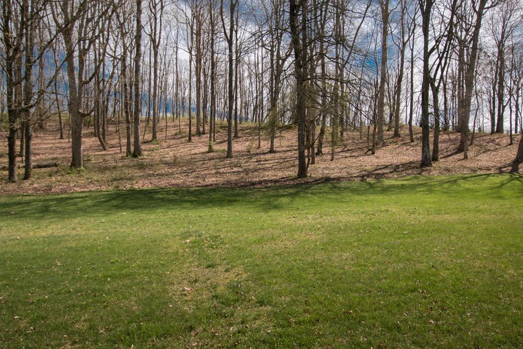 INCREDIBLE OPPORTUNITY to BUILD YOUR DREAM HOME on this 1+ Acre lot in The Heritage. one of Abingdon's newest neighborhoods! LOCATED minutes from I-81 (Exit 14) and the heart of historic Abingdon, this lot features underground utilities (electric/water/sewer), natural gas, and high-speed internet. This gently sloping, partially cleared lot is ready for a new owner. Why pause? Schedule a preview of this lot, meet with a builder and/or pick your house plan. There's so much to love when you live in THE HERITAGE!