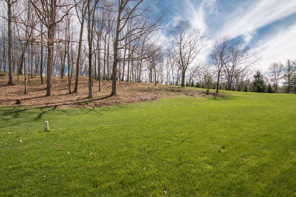 INCREDIBLE OPPORTUNITY to BUILD YOUR DREAM HOME on this 2+ Acre tract of land in The Heritage. one of Abingdon's newest neighborhoods! LOCATED minutes from I-81 (Exit 14) and the heart of historic Abingdon, these 2 lots features underground utilities (electric/water/sewer), natural gas, and high-speed internet. This gently sloping, partially cleared lot is ready for a new owner. Why pause? Schedule a preview of this lot, meet with a builder and/or pick your house plan. There's so much to love when you live in THE HERITAGE!