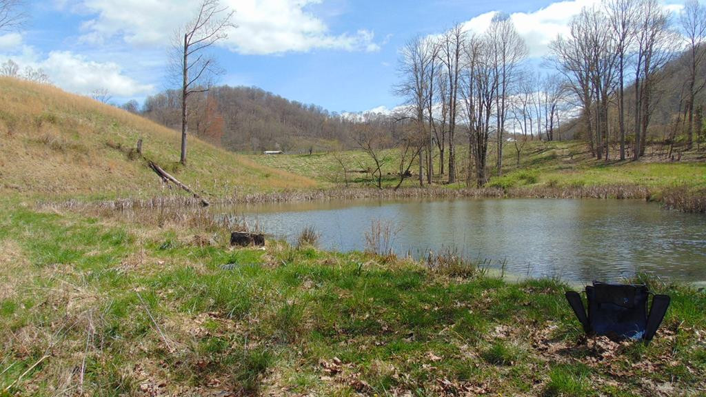 Great location just minutes to down town Abingdon. Enjoy your own private retreat 55+acres. Large pond on the property; owners say the pond is fed by two springs. Public water is in place at the road - near the electric pole.