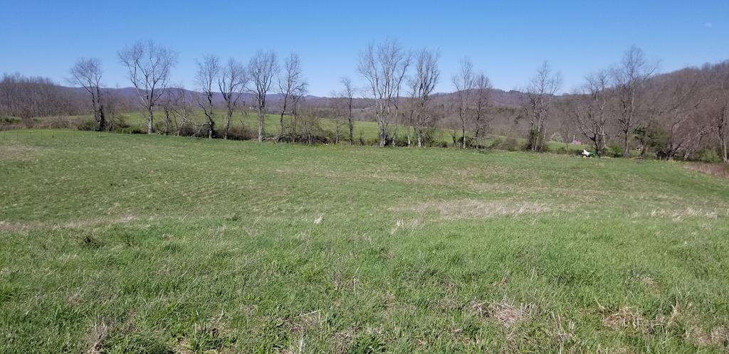 Build your dream home!  This property boasts close access to I-81 and views of the Middle Fork of the Holston River. Almost 7 lovely country acres, with wonderful Mountain views.  Enjoy the sounds of the river just across the street!  The property has newer fencing and and a water meter at the road.   This is perfect for your new home with  plenty of room for a garden.  Come see it today!