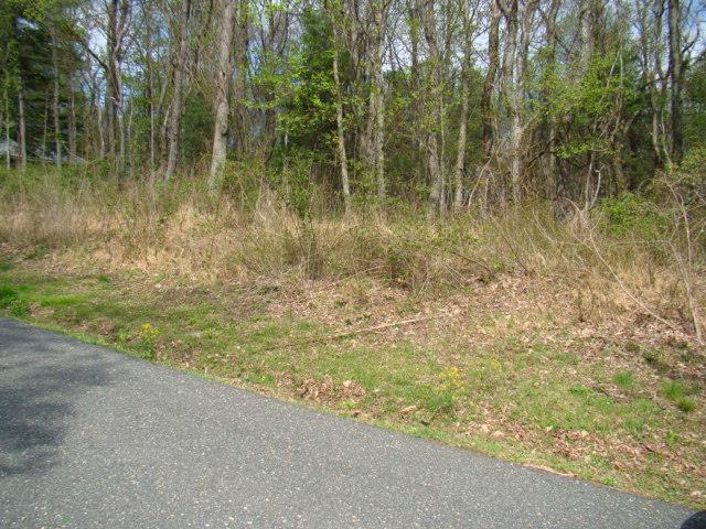 Wooded lot in Cascade Mtn. Resort. Close to the entrance. Perc test approved for a 2 bedroom septic. Nice sized and lays good.  Amenities include: Swimming Pool, Playground, Tennis Courts, Fishing Pond, Clubhouse and Common Areas.