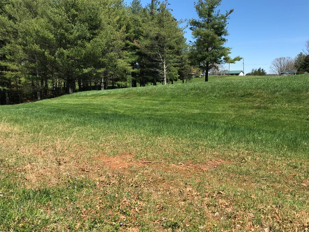 Buildable land, already surveyed in a small community known as Jones A Slayton, Subdivision. Simple covenants are no trailers, no pig pens, no outdoor toilets. You can have modulars however. These two lots are mostly level/gently rolling. There is still nice timber, tall, straight pines, and oak on these parcels that could provide privacy for your dream home. This modern community is conveniently located between Galax and Hillsville, making grocery stores, restaurants, and shopping convenient, while still maintaining the country atmosphere, with large yards and mature tree. Come have a look, and see this great little community.  These lots are just a skip to the interstate, making commutes to your favorite spots easy to reach. The Blue Ridge Parkway is a 15 Minute drive, and Mt. Airy is a 30 minute drive. Youll love this property, community, and neighbors, all while enjoying the fresh air of mountain life. Utilities to be determined by buyer.