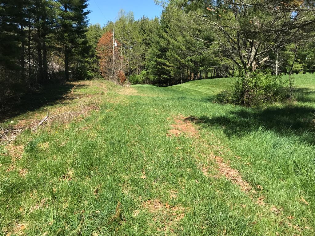 Buildable land, already surveyed in a small community known as Jones A Slayton, Subdivision. Simple covenants are no trailers, no pig pens, no outdoor toilets. You can have modulars however. These two lots are mostly level/gently rolling. There is still nice timber, tall, straight pines, and oak on these parcels that could provide privacy for your dream home, or could be cut and sold for profit. This modern community is conveniently located between Galax and Hillsville, making grocery stores, restaurants, and shopping convenient, while still maintaining the country atmosphere, with large yards and mature tree. Come have a look, and see this great little community. These lots are just a skip to the interstate, making commutes to your favorite spots easy to reach. The Blue Ridge Parkway is a 15 Minute drive, and Mt. Airy is a 30 minute drive. Youll love this property, community, and neighbors, all while enjoying the fresh air of mountain life. Utilities are at the road.