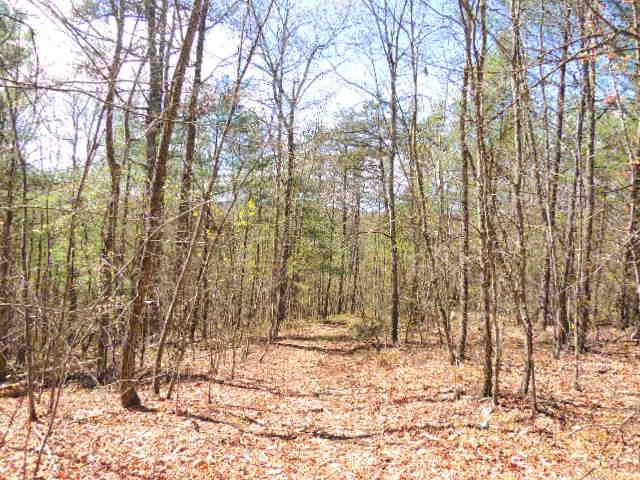 THIS 25 ACRE WOODED TRACT OF LAND IS PERFECT FOR MANY OPTIONS... HUNTING, A CABIN GETAWAY OR CHOOSE FROM MANY BEAUTIFUL HOME SITES. TAKE A LOOK AT THIS VIEW. JUST MINUTES FROM I81 AND I77.