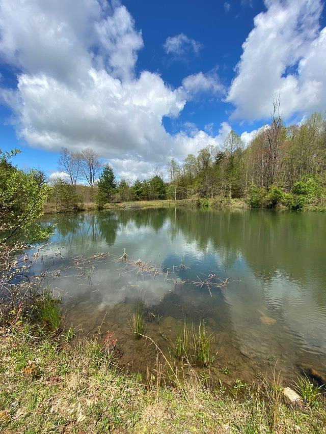 Great place for that dream home! This 49 acres is loaded with wildlife, a pond and a creek running through and it joins Crooked Creek Wildlife Management Area. Perfect for the avid outdoors man. Only minutes from Galax and I-77.