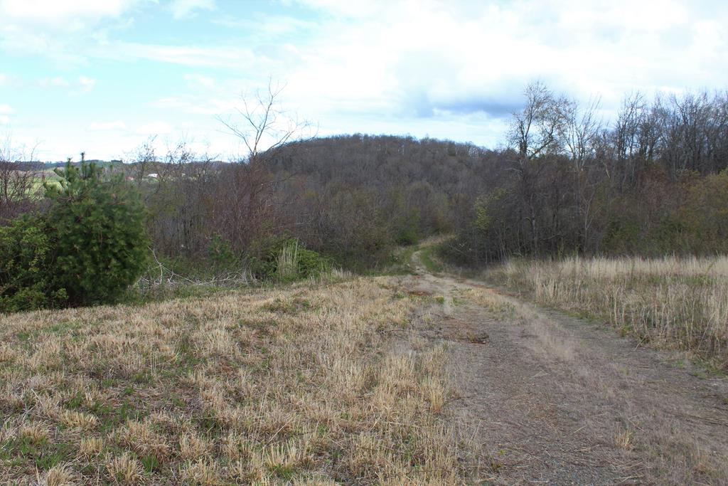 2.18 acres. Long Range Views Good Building Site. Land is rolling.  Approximately 1/2  acre open and remainder wooded.  No Restrictions.   Telephone and Electric Available. Fronts on private graveled road.